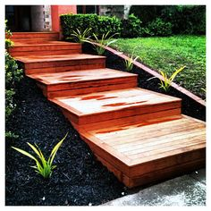 Merbau Steps