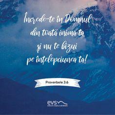 Faith Quotes, Texts, Wisdom, God, Roman, Movie Posters, Bible, Verses, Religious Quotes
