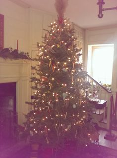 Tree decked out in the Farm House Parlor!