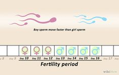 4 Ways to Conceive a Girl (Shallower penetration so the Y sperm tire out faster than X sperm)