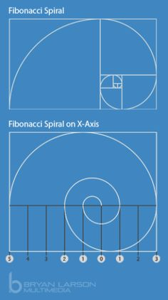 Using an axis is another way to measure a spiral to show that it is based on the Fibonacci sequence.