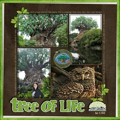 Tree of Life Disney World Animal Kingdom Scrapbook Page Layout