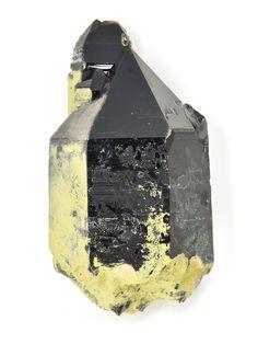 New Morion Smoky Quartz with Chlorite just added. See more here: http://www.exquisitecrystals.com/quartz/smoky-quartz