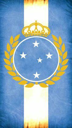 #Cruzeiro #CruzeiroEsporteClube #RaposaSegueRaposa #Raposa