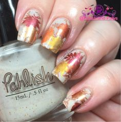 Polish and Paws: HPB Presents: Fall Color