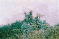Double exposure, diana camera, 35mm film photography