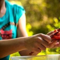 making-a- lunch-MarjanLazarevski-flickr.jpg
