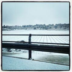 Nieve!