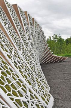 """structured moss wall called """"Surface Deep,"""" a project by Harvard Graduate School of Design's landscape architecture department"""