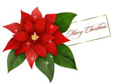 Πρωτότυπες Χριστουγεννιάτικες ευχές