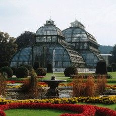 """""""The Palm House in the palace park at Schönbrunn is the largest of its kind on the European continent. It houses dozens of Mediterranean, tropical and subtropical plants."""" - http://www.wien.info/en/sightseeing/sights/imperial/palm-house-schoenbrunn"""