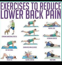 Exercise for back pain. Very much needed in my life