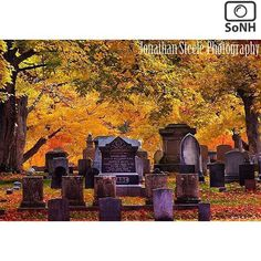 New Hampshire  ✨ Photographer  @jonathansteelephotography  #ScenesofNewEngland  Pic of the Day  10.26.15 ✨ C o n g r a t u l a t i o n s ✨ ----------------------------------------- #scenesofNH #doverNH #igersnh #ignh  #newhampshire_potd #pinehillcemetary #cemetary #graveyard  #newhampshire_cemetary  #newhampshire_explore #expl...