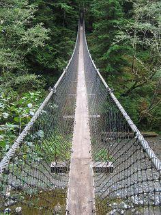 West Coast Trail - Hanging Bridges//Yeah, I'll just take the long way 'round. Thanks.