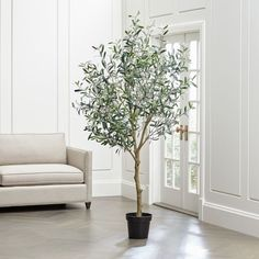 Refresh the room with a touch of the Mediterranean. Our lifelike, seven-foot-tall olive tree fools the eye with its realistic branches and soft green leaves characteristic of the olive tree. Large Indoor Plants, Fake Plants, Fake Indoor Trees, Olives, Faux Olive Tree, Indoor Olive Tree, Fake Flowers, Home Decor Trends, Crate And Barrel