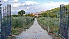 Villa- RadicondoliLocation de vacances à partir de Radicondoli @HomeAway! #vacation #rental #travel #homeaway