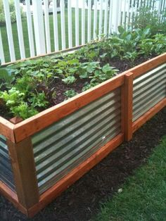 raised bed made of galvanized roofing and wood/Plant beds