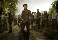 The Ultimate Walking Dead Quiz Only a True Fan Would Pass   moviepilot.com    I got: A Walking Dead expert! You've been with Rick and the gang since the beginning and you remember it all. Your post-apocalyptic world knowledge could fill a handbook and you know you always go for the brain.