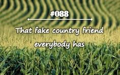 Too bad all of mine are fake ones