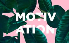 다음 @Behance 프로젝트 확인: \u201cMotivation poster\u201d https://www.behance.net/gallery/49519061/Motivation-poster