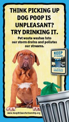 Keep It Clean Partnership | Stormwater Pollution Prevention » Scoop the Poop
