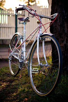 delightful cycles, they build/restore some great bikes