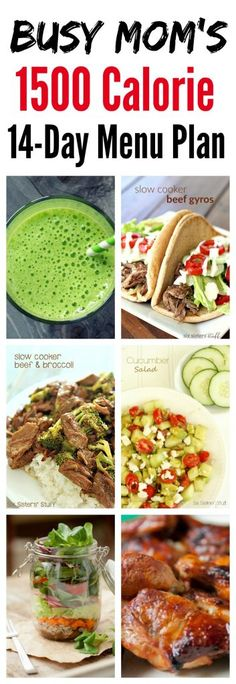 Busy Mom's 1500 Calorie 14-Day Calorie Plan on SixSistersStuff.com