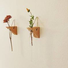 Wooden Vase, Woodworking Projects That Sell, Corner Shelves, Bud Vases, Painting On Wood, Garden, Plants, Leather, Home Decor