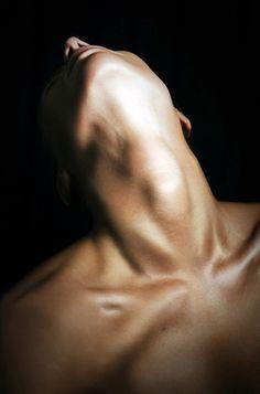 Anatomical Landscape. Shoulders, throat, neck, woman.