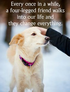 Our pets truly change our lives!