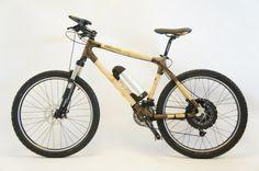 bikes and bamboo.
