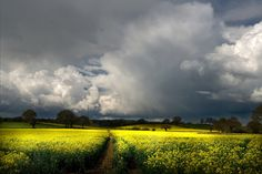 Colours of April by flash of light, by flash of light (neil) via Flickr