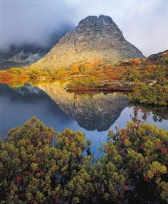 Peter Dombrovskis, Morning light on Little Horn, Cradle Mountain-Lake St. Clair National Park, Tasmania, also at IPHF museum Horn Lake, Australian Photography, Largest Countries, Tasmania, Landscape Photographers, Amazing Architecture, Landscape Photos, Wilderness, Places To See