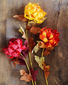 "wattlebirdblog:  "" DIY dipped-top paper chrysanthemums via Oh Happy Day  """