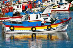 in Sesimbra /Portugal Setubal Portugal, Dolphin Tours, Mode Of Transport, Beach Fun, Fishing Boats, Dolphins, Sailing Ships, Greece, Places To Go