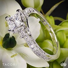 Tacori Classic Crescent Channel-Set Three Stone Engagement Ring. I don't usually like things like this, but oh my I would be happy with this :-)