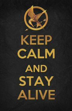 Because you can totally 'keep calm' in the Hunger Games