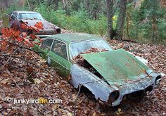 Junkyard Life: Classic Cars, Muscle Cars, Barn finds, Hot rods and part news: 01/01/2010 - 02/01/2010