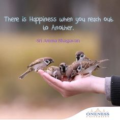 There is happiness when you reach out to another. -Sri Amma Bhagavan
