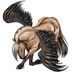 GA Pegasus Coats - the-new-howrse Photo