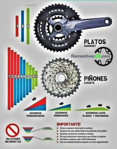 Relaciones de Platos y Piñones de MTB Cycling Tips, Cycling Workout, Cycling Motivation, Motivation Wall, Fitness Motivation, Spin Bike Workouts, Chest Workouts, Fixed Bike, Fixed Gear