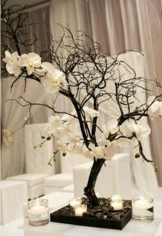 Centro de mesa orquídeas y ramas