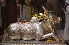 Mahakaleshwar Jyotirlinga - silver Nandi - vahana of Lord Shiva Shiva Linga, Shiva Shakti, Shiva Art, Hindu Art, Ganesh Statue, Lord Shiva Family, Lord Mahadev, Om Namah Shivaya, Bollywood Jewelry