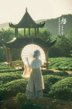 Asian Lady in the Gardens with a Parasol Geisha, Traditional Fashion, Traditional Outfits, Chinese Culture, Chinese Art, Aesthetic Japan, China Girl, Oriental Fashion, Ancient China