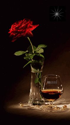 Check out maniivanov's collection of images and Gifs Beautiful Gif, Beautiful Roses, Gifs, Gif Bonito, Beau Gif, Night Gif, Glitter Graphics, Still Life, Red Roses