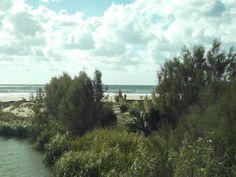 Il fiume, il mare; e nel mezzo la duna naturale.