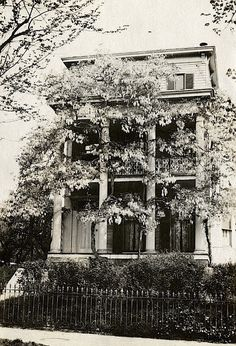 The Sunday porch/enclos*ure: wisteria-covered house, 1919, Washington D.C., via Smithsonian.