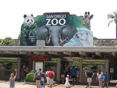 San Diego, California is GORGEOUS...and their zoo is OUTSTANDING!