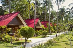 Podróżowanie to nasza pasja! Znajdź najlepsze hotele! Swiss Halley #swisshalley