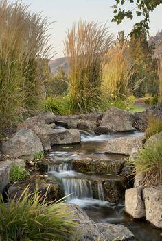 Diese wilden und hohen Gräsern erwecken diese steinernen Wasserfall zum Leben mit einem angenehmen Profil von Textur und Farbe. Diese Kombination ist die perfekte Sammlung von Elementen, die eine unglaublich natürliche Gefühl Gewässer zu machen.